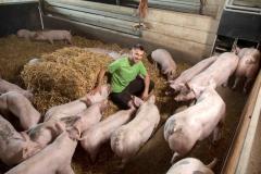 2-Schweine_Stroh_Grothhof1